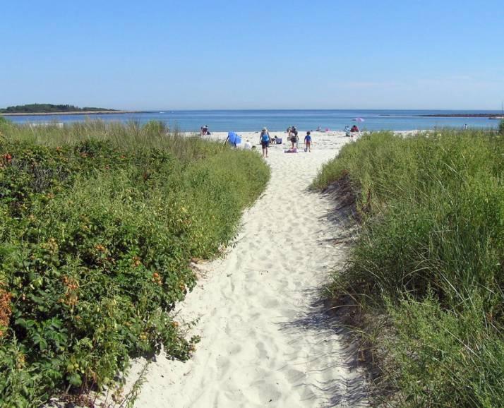 Near Local Beaches